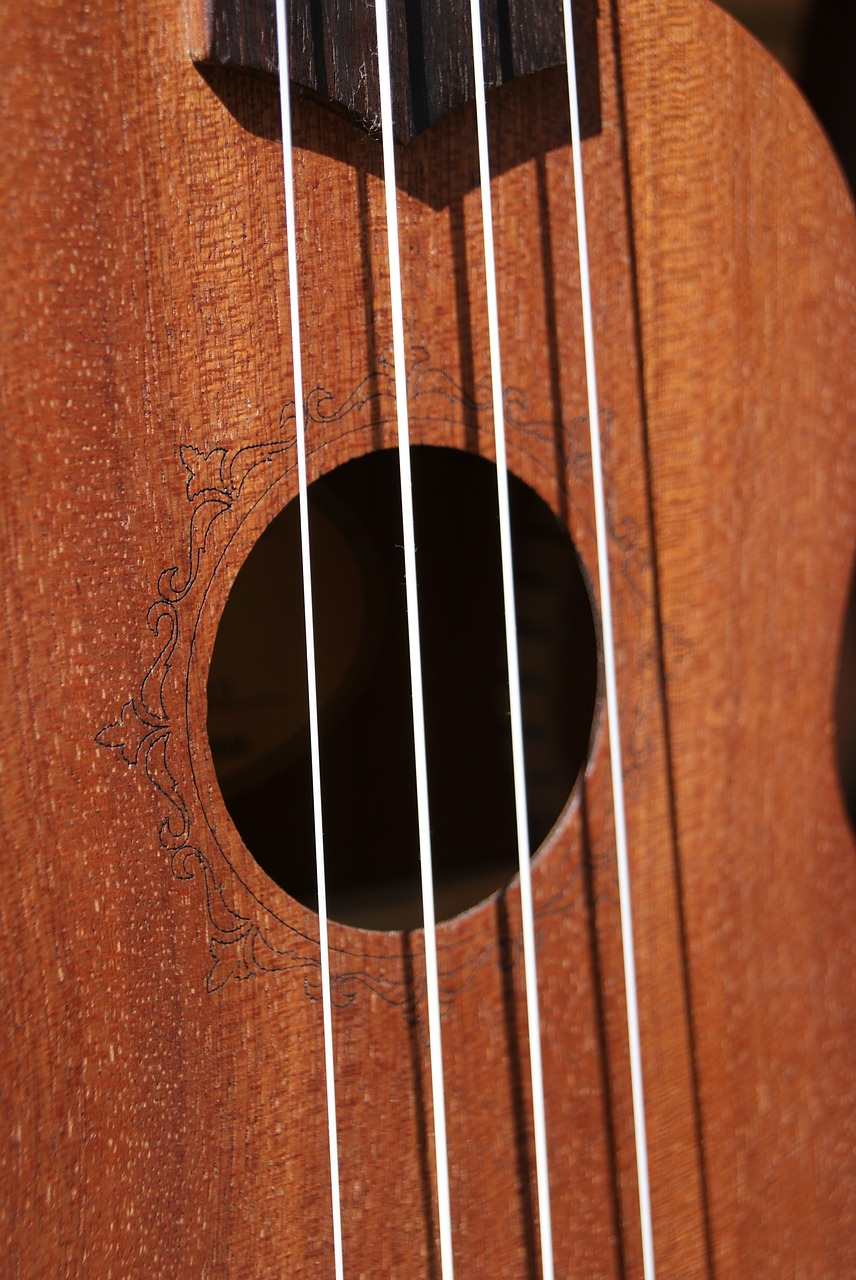 Ukulele strings at basicukulele.com