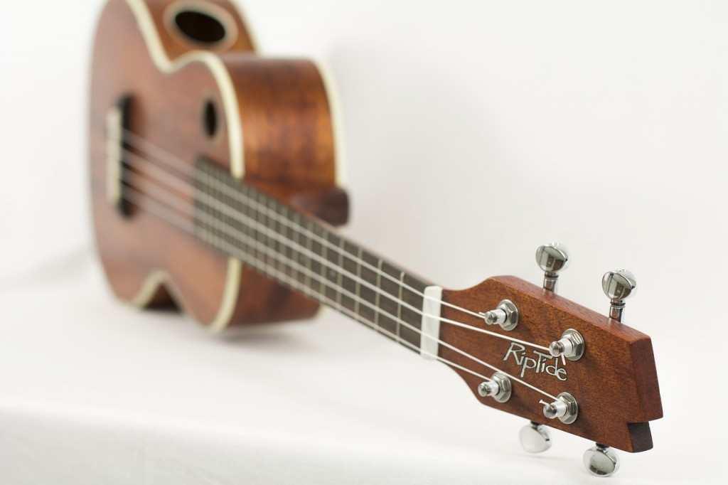 Chords on Ukulele (www.basicukulele.com)