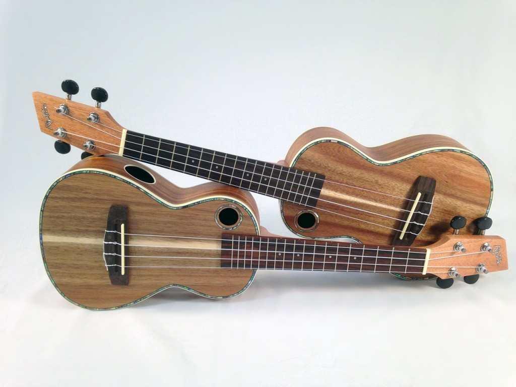 easy ukulele songs on www.basicukulele.com