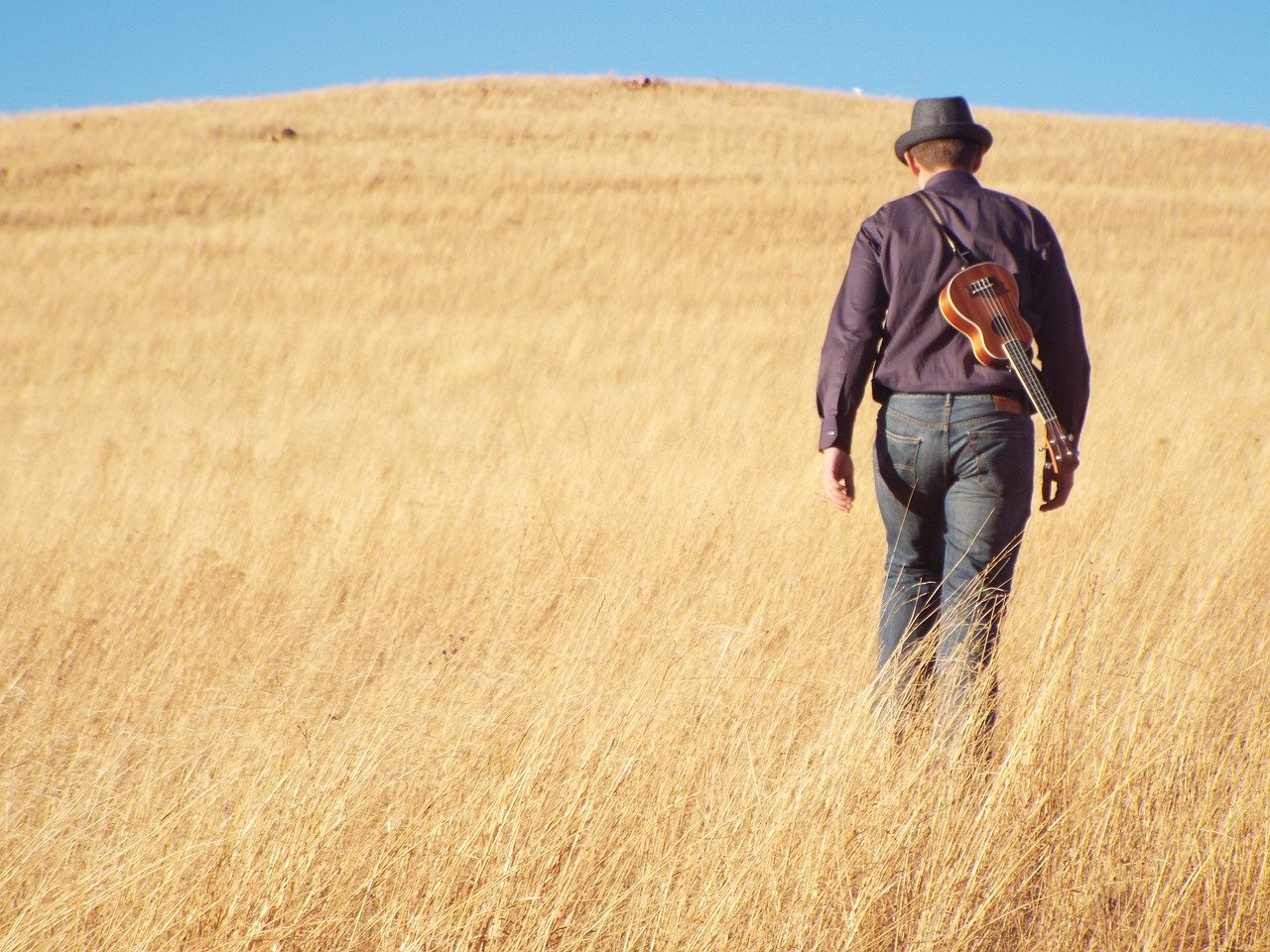 Basic Ukulele Photo: Pixabay